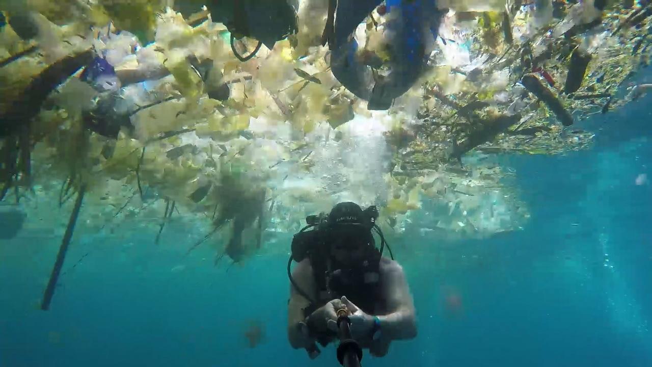 Waduh Turis Inggris Rekam Sampah Di Manta Point Bali Portal