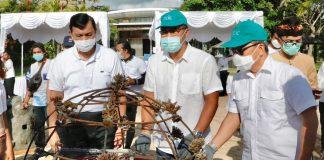 transplantasi-terumbu-karang-program-padat-karya